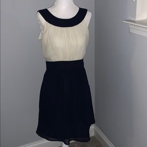 Navy and Ivory Fit and Flare Dress